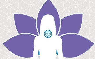 Ateliers de Hatha-yoga et méditation